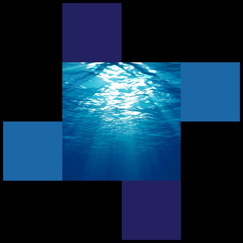 IP products, ocean
